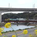 鉄橋走るくまモン・・長野橋近く