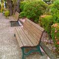 Photos: ベンチで休憩