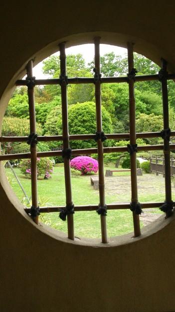 茶室から見た庭