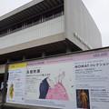 Photos: 国立近代美術館「高畑勲展」