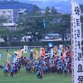 Photos: 取るのじゃ~!