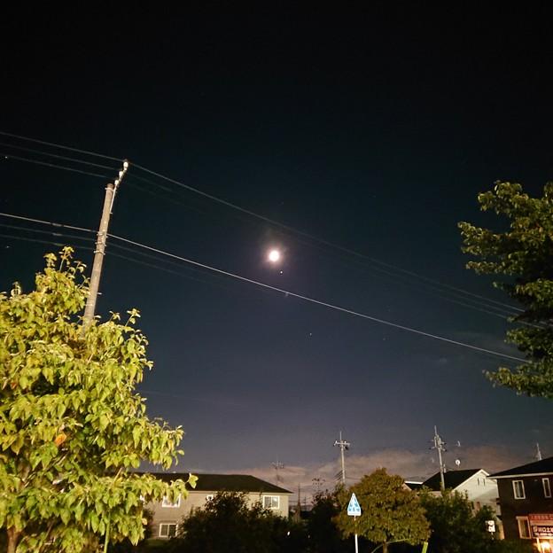 月の右下に木星