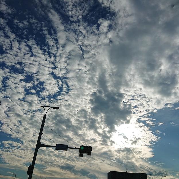 Photos: new sky