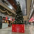 クリスマスツリーinパレスサイドビル2019