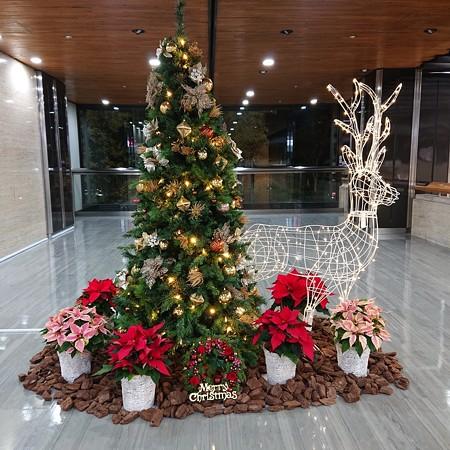 クリスマスinパレスサイドビル2019