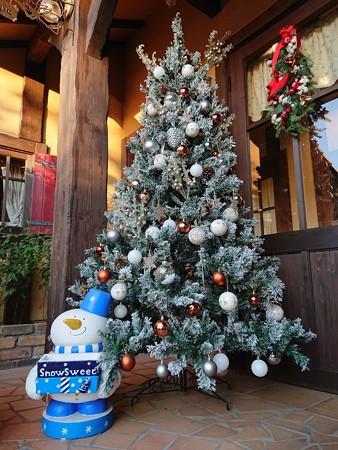 クリスマスツリー at saint-amour