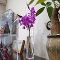 Photos: お花交換