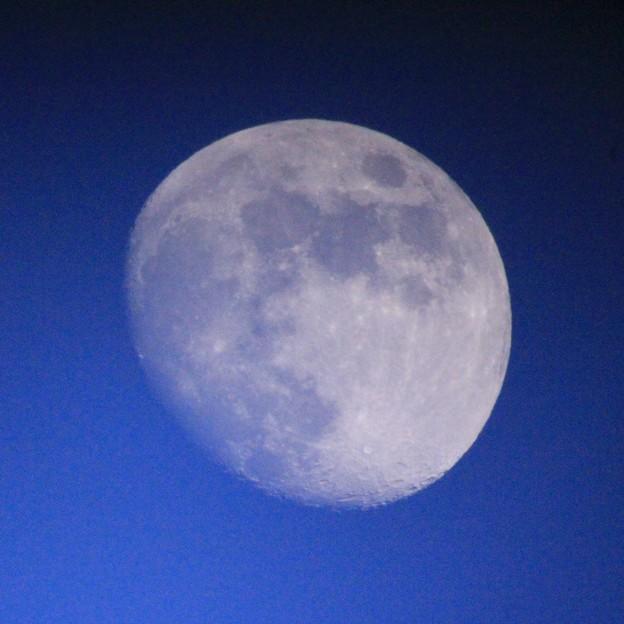 Photos: 明るい空、白い月