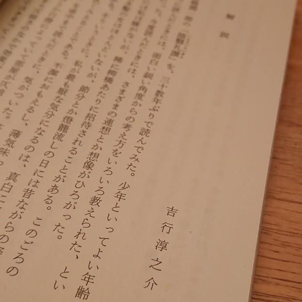 Photos: 解説は吉行淳之介氏