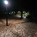 Photos: 街灯の足元は