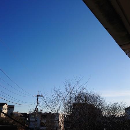 bluesky20201231