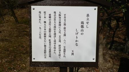 P1051410