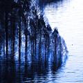 ダム湖-1