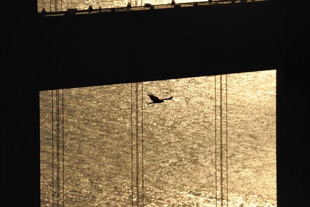 Photos: 橋を背に