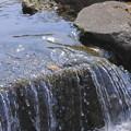 写真: 水はずむ