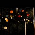 写真: 夜に浮かぶ