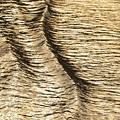 瀬戸の小波