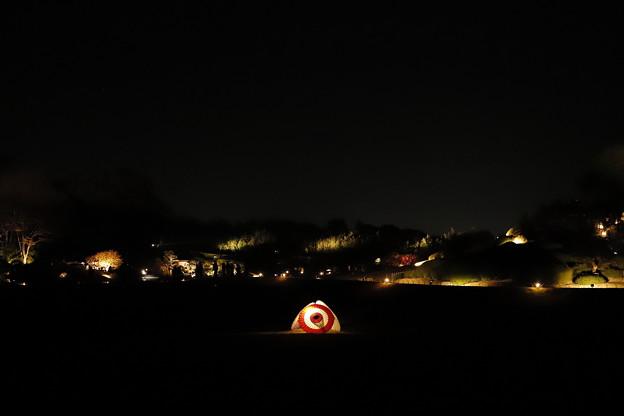 庭園に灯る