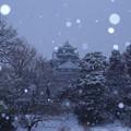 淡雪降って