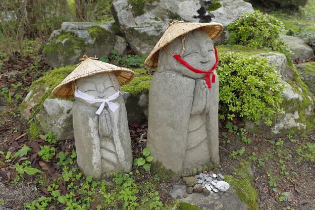 Photos: ほほえみ