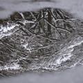 道端の雪景色
