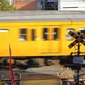 Photos: オレンジ列車
