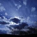 Photos: 藍