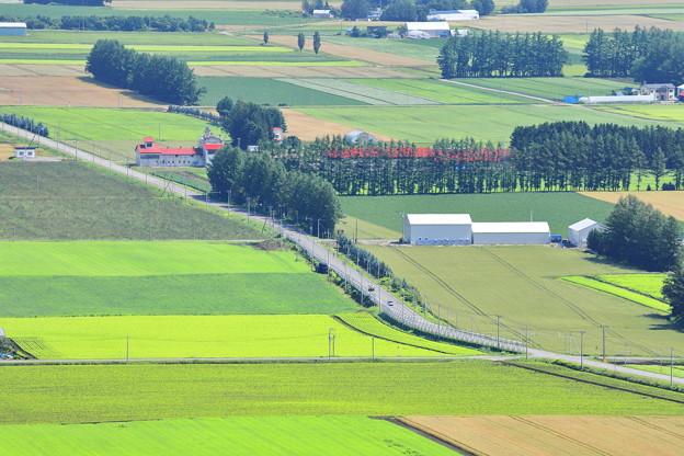 Photos: 畑を縫って