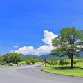 Photos: 高原道路