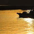 Photos: 出漁