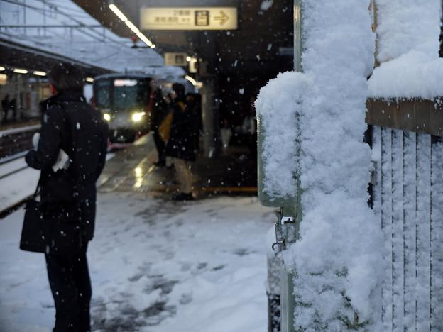 降りしきる雪の中