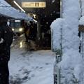 写真: 降りしきる雪の中