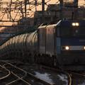 写真: 朝を映す貨物列車