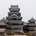 写真: 国宝、松本城