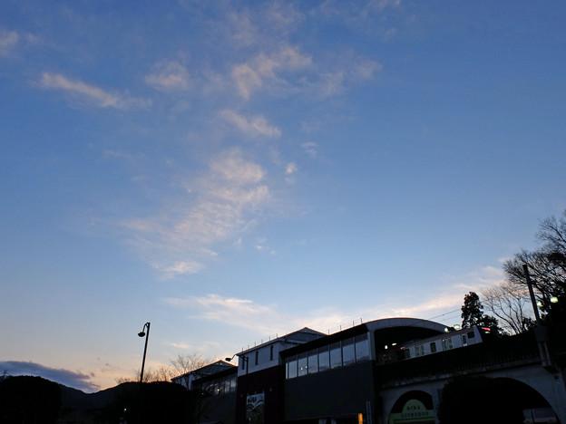 夕刻ターミナル