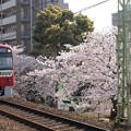 Photos: 京急沿線