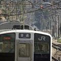 写真: 普通列車
