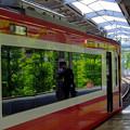 写真: 窓の中の新緑