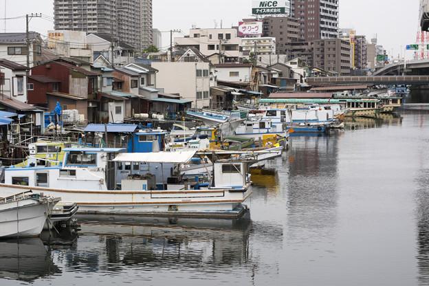 横浜運河沿い1