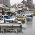 写真: 横浜運河沿い1