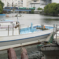 写真: 横浜運河沿い2