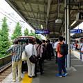 写真: 京急「花電車」1