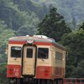 Photos: 緑の山道