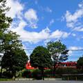 Photos: 青空公園