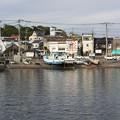 写真: 三崎港