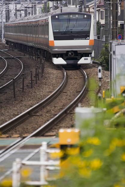 通勤電車と線路際の花