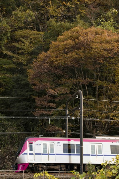 Mt. TAKAO号