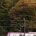 Photos: Mt. TAKAO号