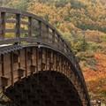 Photos: 晩秋の木曾の大橋