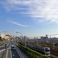 Photos: 秋空とE217系